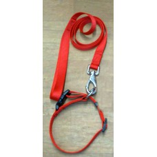Leash Set With Nylon Collar (Medium)