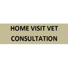 Home Visit Vet Consultation