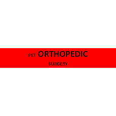 Pet Orthopedic Surgery