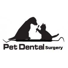 Pet Dental Surgery