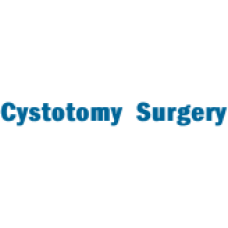 Pet Cystotomy Surgery