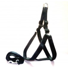 Dog Leash-Harness Set Padded (size-0.75 inch)