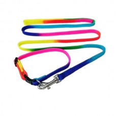 Super Dog Multi Colour Collar Set