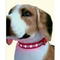 Dog Collar With Light (1 Pcs)