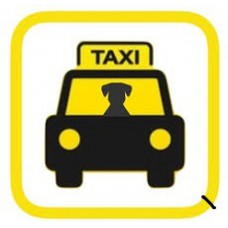 Pet Taxi - Delhi Package 4 days
