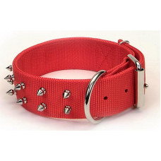 Spike Collar ( Small )