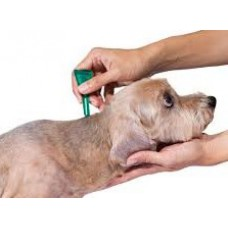 Tick and Flea Treatment (Small Breeds)