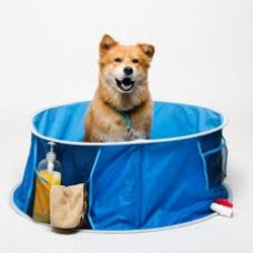 Squeaky Clean Package (Medium Breeds)