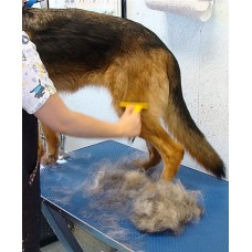 De-Shedding Treatment (Large Breeds)