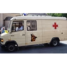 Pet Ambulance Services (South Delhi Only)