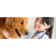 Home Visit  -  Vet Consultation
