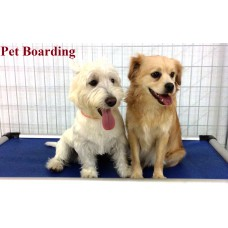 Boarding 7 days Plan - Large Breed