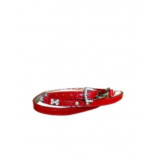 Fekrix Leather Leash With Collar ( Red )