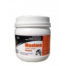 Cipla Maxima Powder ( 100 mg )