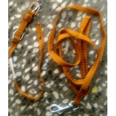 Leash With Collar Set (Mustard Color Small)
