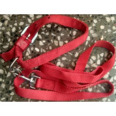 Dog Leash With Collar Set Red Color (L)